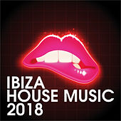 Ibiza House Music 2018 by Various Artists