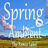 Spring Ambient (Inspirational Ambient Chillout Music on The Remix Label) von Cristian Paduraru
