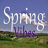 Spring Vibes (Inspirational Ambient Chillout Music on The Remix Label) von Cristian Paduraru