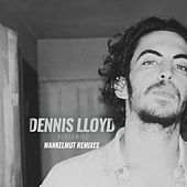 Nevermind Wankelmut Remixes by Dennis Lloyd