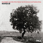 Nordub by Vladislav Delay