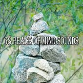 68 Peace Of Mind Sounds von Massage Therapy Music