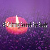 48 Calming Sounds For Study by Classical Study Music (1)