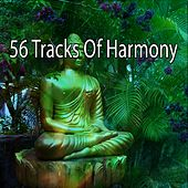 56 Tracks Of Harmony von Lullabies for Deep Meditation
