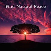 13 White Noise and Nature Sounds for Natural Peace by Zen Music Garden