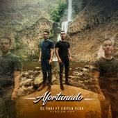 Afortunado (Versión Pop) by Luis Alfonso Partida El Yaki