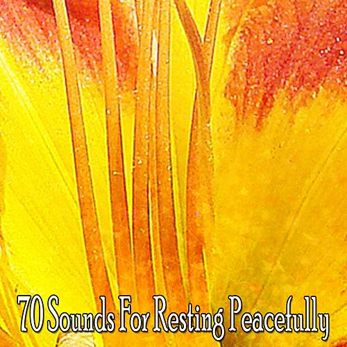 70 Sounds For Resting Peacefully by Einstein Baby Lullaby Academy