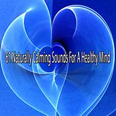 61 Naturally Calming Sounds For A Healthy Mind von Lullabies for Deep Meditation