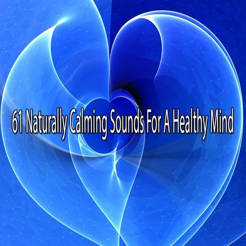 61 Naturally Calming Sounds For A Healthy Mind de Lullabies for Deep Meditation