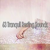 63 Tranquil Resting Sounds von Rockabye Lullaby
