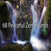 68 Peaceful Zen Sounds von Massage Therapy Music