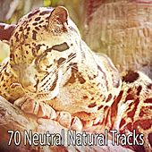 70 Neutral Natural Tracks by Sounds of Nature Relaxation