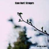Stone Heart Strangers de Life Lost In Colours