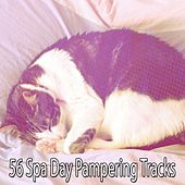 56 Spa Day Pampering Tracks von Best Relaxing SPA Music