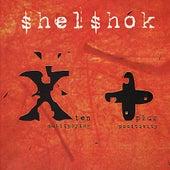 Shelshok Presents: Ten (Multiplying), Plus (Positivity) by Various Artists