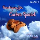 Beruhigung für Cocker Spaniel (432Hz) by 432 Hz