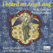 I Heard an Angel Sing by David Bednall
