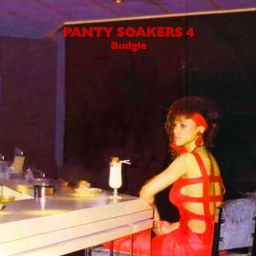Panty Soakers 4 by Budgie
