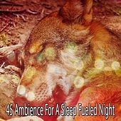 45 Ambience For A Sleep Fueled Night by Deep Sleep Relaxation
