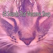 64 Sounds That Welcome Sleep de Sounds Of Nature