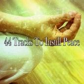 44 Tracks To Instill Peace de Musica Relajante