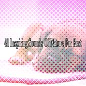 41 Inspiring Sounds Of Nature For Rest by Nature Sound Series