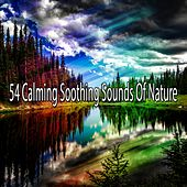 54 Calming Soothing Sounds Of Nature de Nature Sounds Artists