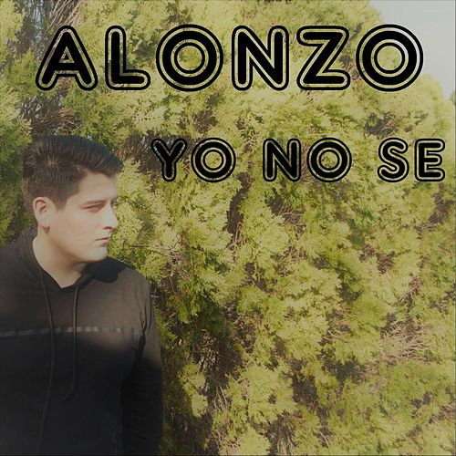 Yo No Se de Alonzo