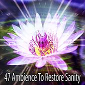 47 Ambience To Restore Sanity von Entspannungsmusik
