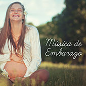Música de Embarazo by Sounds Of Nature