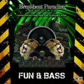 Fun & Bass by Various