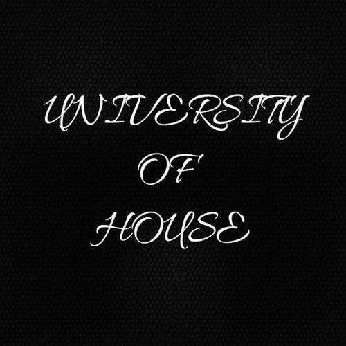 University Of House de Stevie B