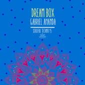 Dream Box by Gabriel Ananda
