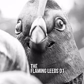 The Flaming Leeds 01 by Various Artists