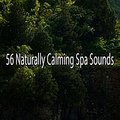 56 Naturally Calming Spa Sounds by S.P.A