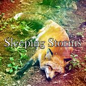 Sleeping Storms de Thunderstorm Sleep