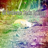 60 Ambience Tracks To Sleep de White Noise Babies