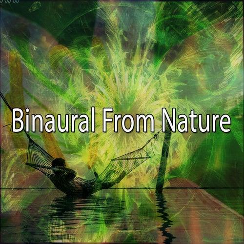 Binaural From Nature by Binaural Beats Brainwave Entrainment