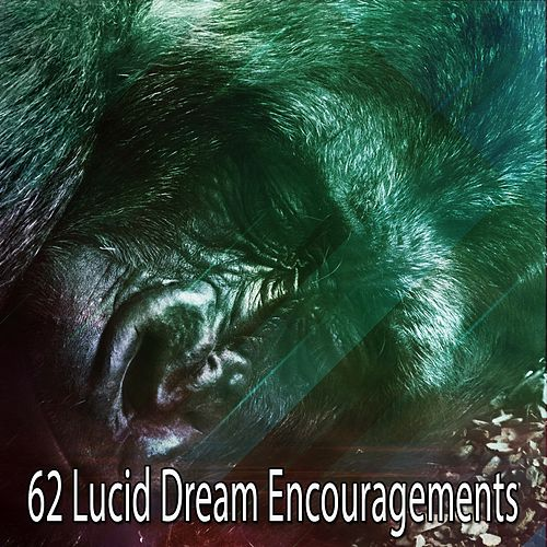 62 Lucid Dream Encouragements de Relajacion Del Mar
