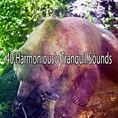 40 Harmoniously Tranquil Sounds de White Noise Babies
