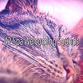 42 Spa Welcoming Sounds by S.P.A