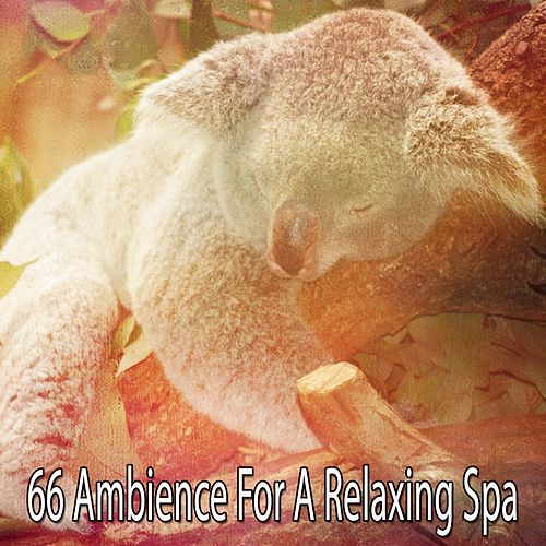 66 Ambience For A Relaxing Spa by Spa Relaxation