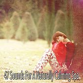 47 Sounds For A Naturally Calming Spa by S.P.A