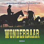 Wonderbaar: Nederlandse Gospels in Country stijl de Various Artists