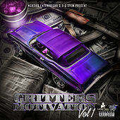 Gritters Motivation, Vol. 1 de Various Artists