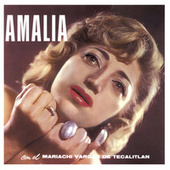 Amalia, Vol. 1 by Amalia Mendoza