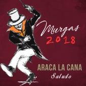 Saludo 2018 de Araca La Cana