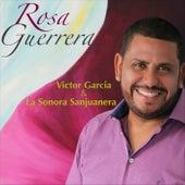 Rosa Guerrera de Victor Garcia