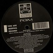 You Are Sleeping (Remixes) de Deep Dish