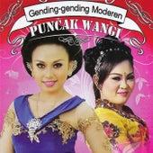 Gending Modern Puncak Wangi by Various Artists
